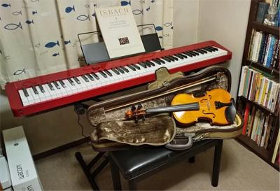 Dsc_piano